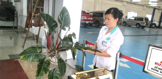 Cleanhouse Việt Nam - Dịch vụ vệ sinh xanh